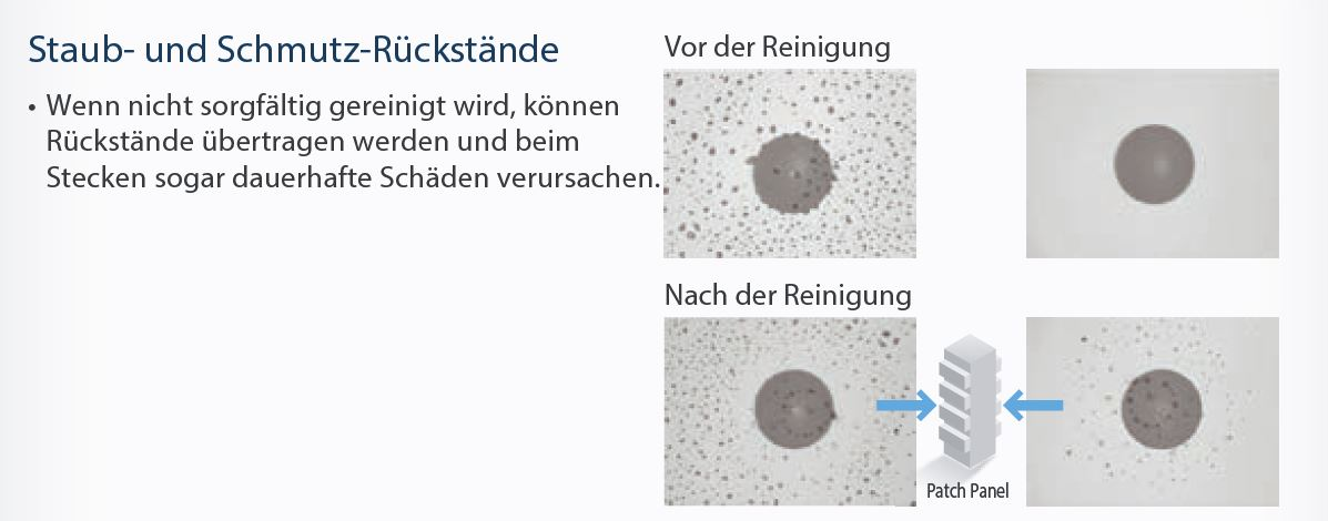 wissen-mikroskopbilder-1